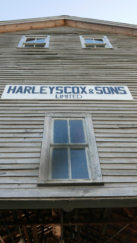 harleyscox_blog